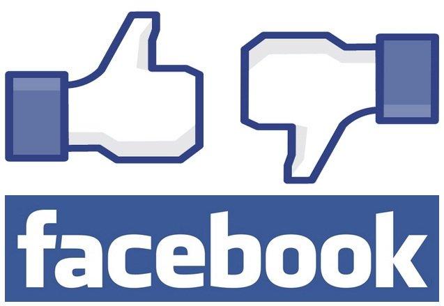 Facebook rey del 2013