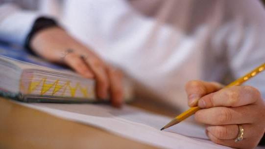 Cómo usar otros ensayos para redactar tu propio ensayo